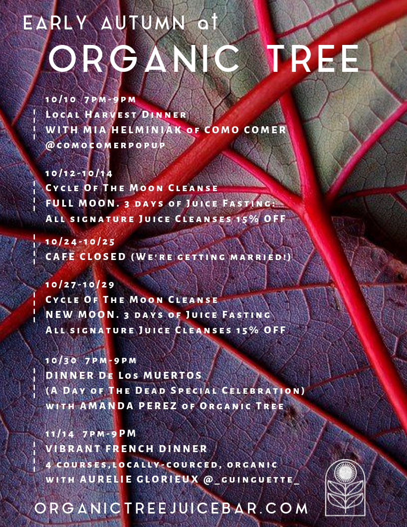 organic tree autumn 2019
